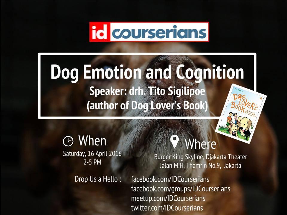 Dog Emotion and Cognition