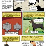 Anjing dan Rabies